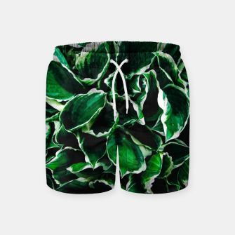 Thumbnail image of Hosta undulata albomarginata vibrant green plant leaves Swim Shorts, Live Heroes