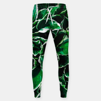 Thumbnail image of Hosta undulata albomarginata vibrant green plant leaves Sweatpants, Live Heroes