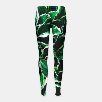 Thumbnail image of Hosta undulata albomarginata vibrant green plant leaves Girl's leggings, Live Heroes