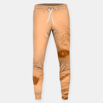 Miniatur red fox digital acryl painting acrcb Sweatpants, Live Heroes