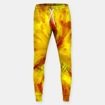 Thumbnail image of color explosion gogh pattern goyr Sweatpants, Live Heroes