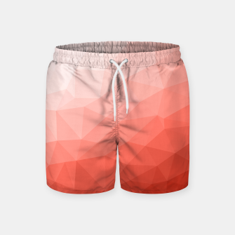 Thumbnail image of Living coral geometric mesh ombre Swim Shorts, Live Heroes