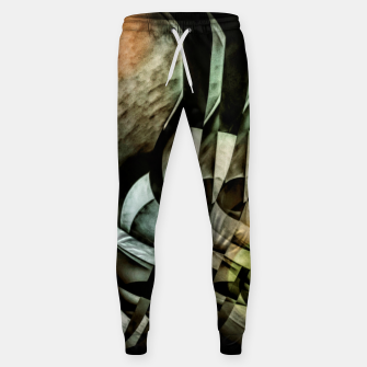 Miniatur transformation Sweatpants, Live Heroes