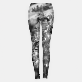 Miniaturka Bee and Blood Currant Ribes Sanguineum bw Leggings, Live Heroes