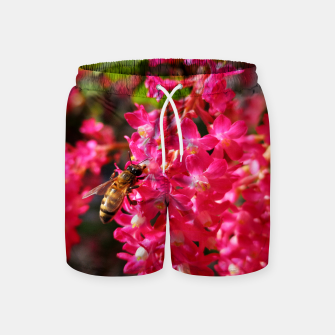 Miniaturka Bee and Blood Currant Ribes Sanguineum std Swim Shorts, Live Heroes