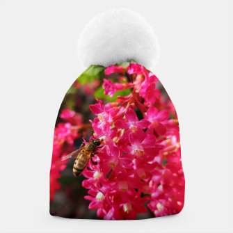 Miniaturka Bee and Blood Currant Ribes Sanguineum std Beanie, Live Heroes