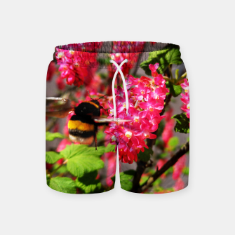Miniaturka Bumble Bee and Blood Currant Ribes Sanguineum std Swim Shorts, Live Heroes