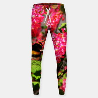 Miniaturka Bumble Bee and Blood Currant Ribes Sanguineum std Sweatpants, Live Heroes