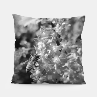 Miniaturka Bee and Blood Currant Ribes Sanguineum bw Pillow, Live Heroes
