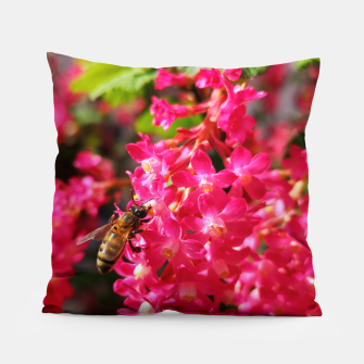 Miniaturka Bee and Blood Currant Ribes Sanguineum std Pillow, Live Heroes