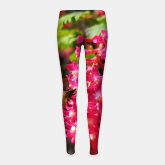 Miniaturka Bee and Blood Currant Ribes Sanguineum std Girl's leggings, Live Heroes