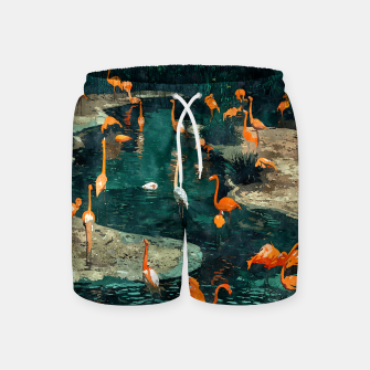 Miniatur Flamingo Creek Swim Shorts, Live Heroes