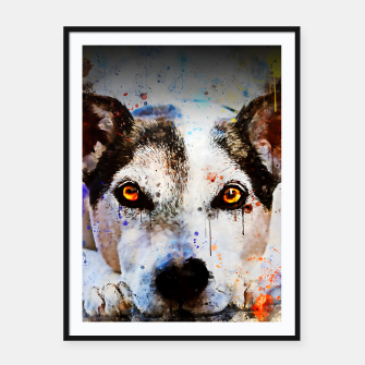 Thumbnail image of lying dog close-up view wsstd Framed poster, Live Heroes