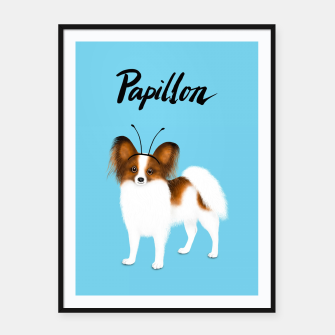 Papillon (Blue) Framed poster miniature