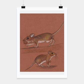 Thumbnail image of wood mice poster, Live Heroes