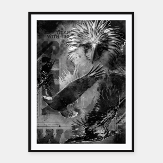 Thumbnail image of Eagles Fury Framed poster, Live Heroes