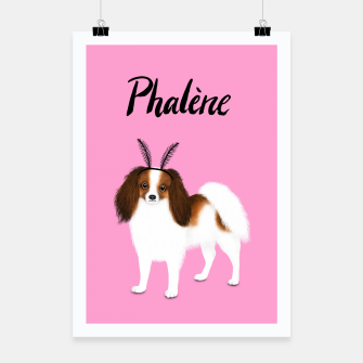 Thumbnail image of Phalène (Pink) Poster, Live Heroes