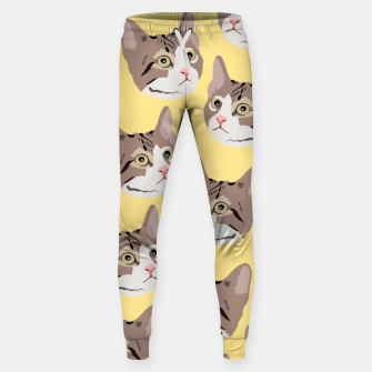 Miniature de image de Kitty Sweatpants, Live Heroes