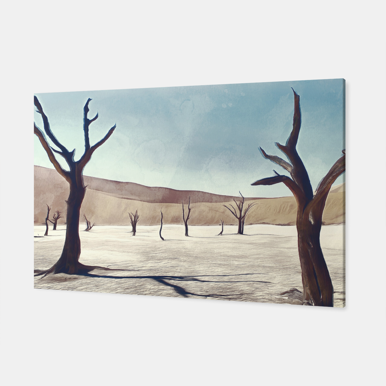 Image of deadvlei desert trees acrfn Canvas - Live Heroes