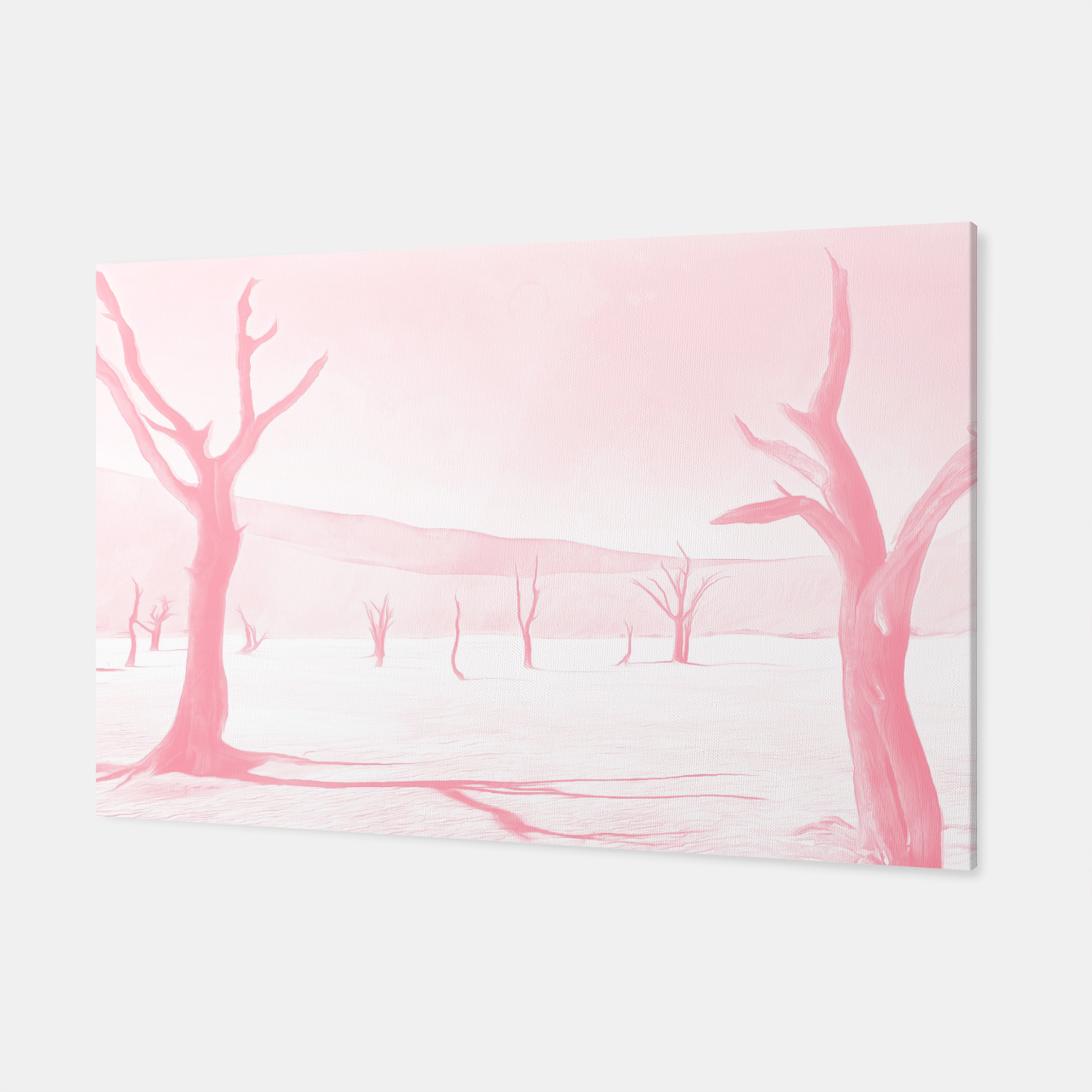 Image of deadvlei desert trees acrpw Canvas - Live Heroes