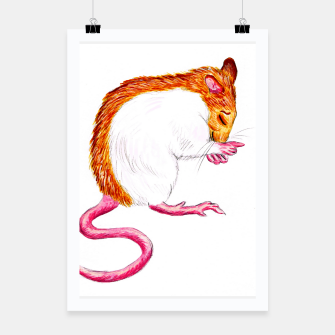 Thumbnail image of laughing rat poster, Live Heroes