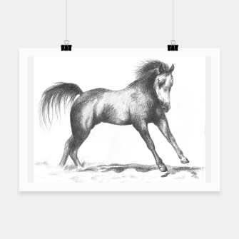Thumbnail image of horse cantering poster, Live Heroes