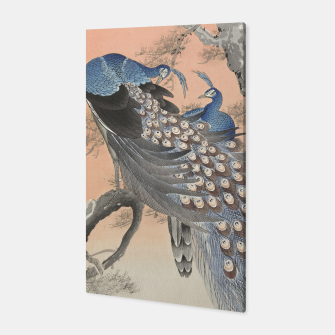 Thumbnail image of Peacocks Canvas, Live Heroes