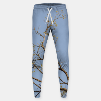 Miniatur Spring branches Sweatpants, Live Heroes