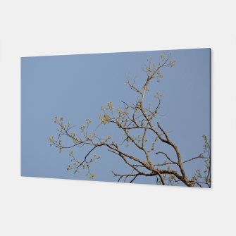 Miniatur Spring branches Canvas, Live Heroes