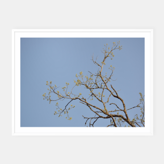Miniatur Spring branches Framed poster, Live Heroes