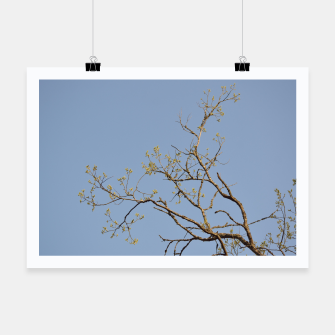 Miniatur Spring branches Poster, Live Heroes