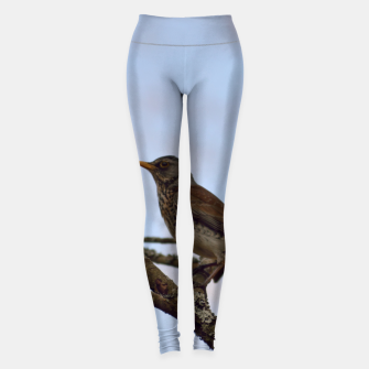 Miniature de image de Fieldfare on a branch Leggings, Live Heroes