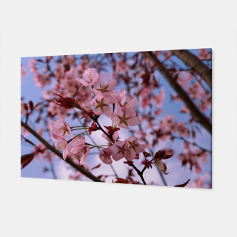 Miniatur Cherry blossom 2 Canvas, Live Heroes