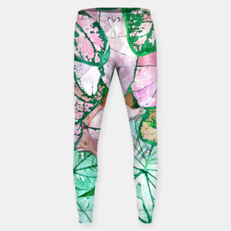 Rain & Nature Sweatpants thumbnail image