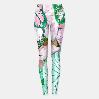 Thumbnail image of Rain & Nature Leggings, Live Heroes