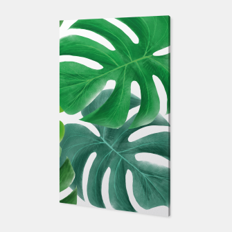 Thumbnail image of Monstera Leaf Canvas, Live Heroes