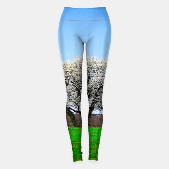 Thumbnail image of the lonely tree std Leggings, Live Heroes