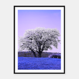 Thumbnail image of the lonely tree db Framed poster, Live Heroes