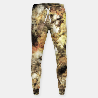 Thumbnail image of The formidable Sweatpants, Live Heroes