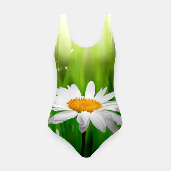 Thumbnail image of Daisy Swimsuit, Live Heroes