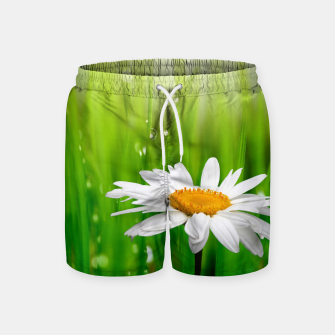 Thumbnail image of Daisy Swim Shorts, Live Heroes
