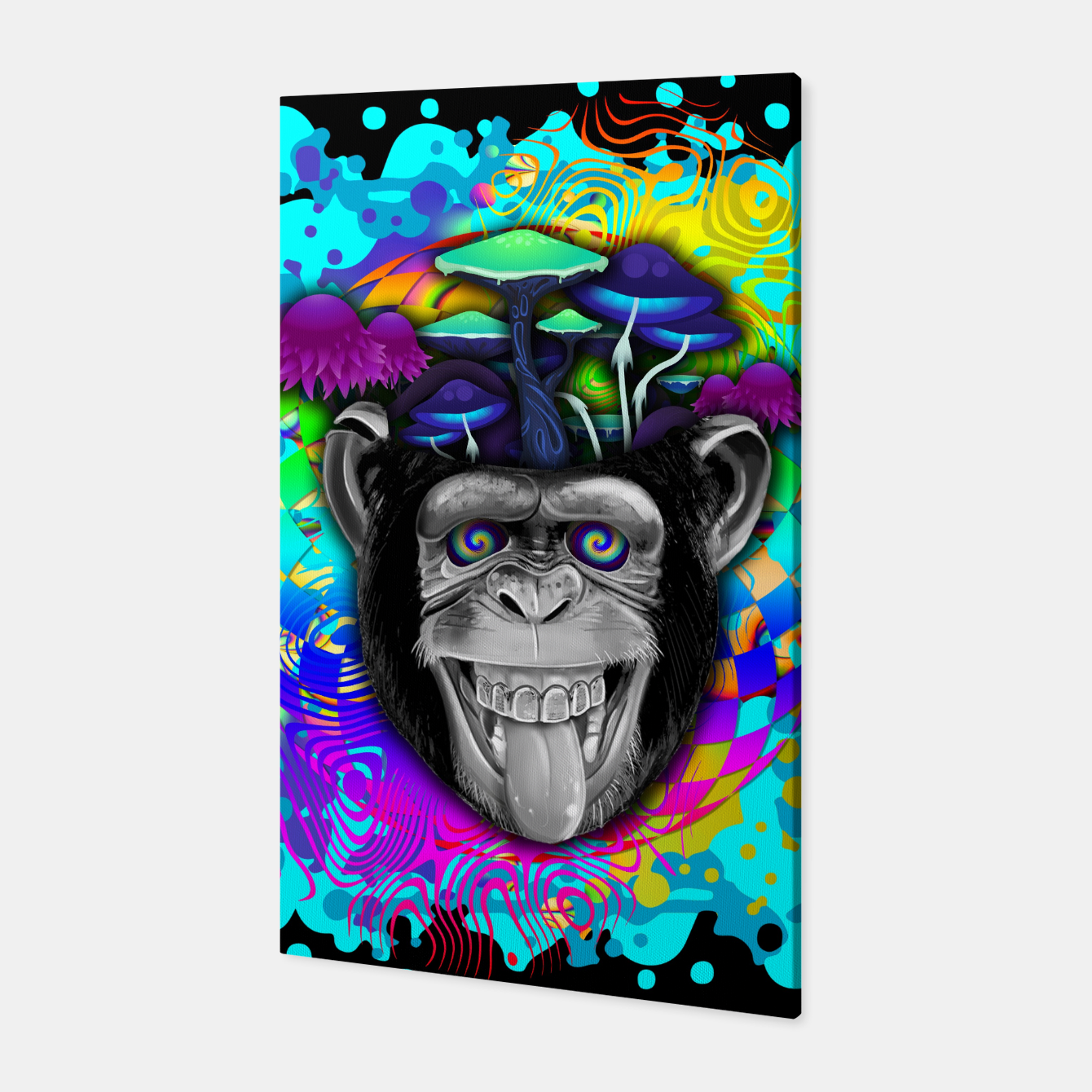 Image of STONED APE THEORY Canvas - Live Heroes