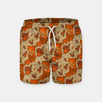 Earthy Tones Animal Skin Pattern Swim Shorts thumbnail image