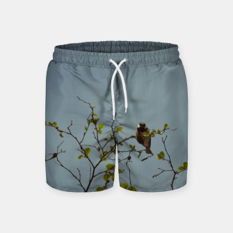 Great tit on a branch Swim Shorts thumbnail image