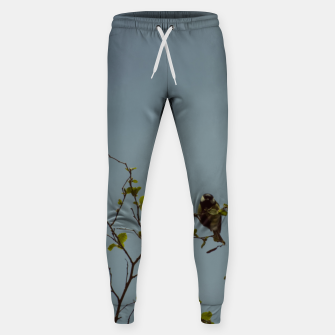 Great tit on a branch Sweatpants thumbnail image