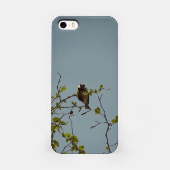 Great tit on a branch iPhone Case thumbnail image