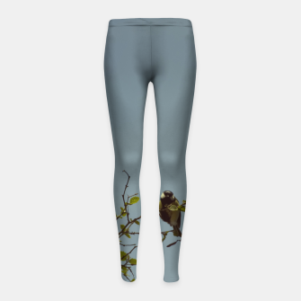 Great tit on a branch Girl's leggings thumbnail image