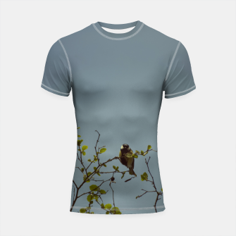 Great tit on a branch Shortsleeve rashguard thumbnail image