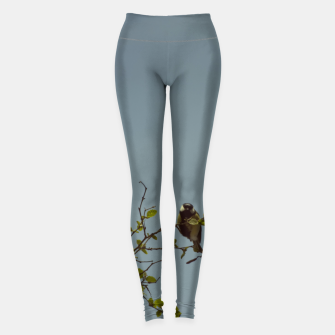 Great tit on a branch Leggings thumbnail image