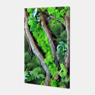 Thumbnail image of picture of moss Canvas, Live Heroes